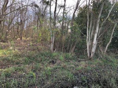 Slidell Residential Lots & Land For Sale: 301 Smokey Hollow Drive
