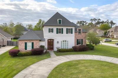 Single Family Home For Sale: 190 Chapel Loop Loop
