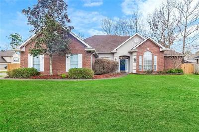 Single Family Home For Sale: 1191 Springwater Drive