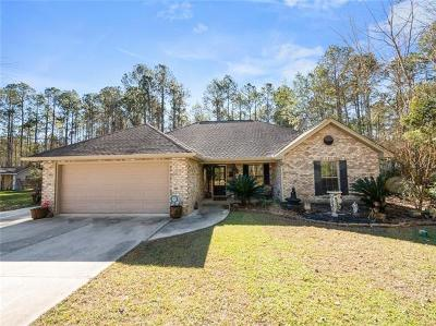 Single Family Home For Sale: 23090 Rollins Street