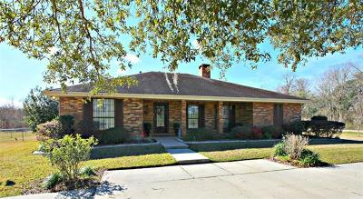 Single Family Home For Sale: 9001 River Road