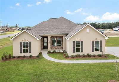 Single Family Home For Sale: 9563 Sweet Bay Lane