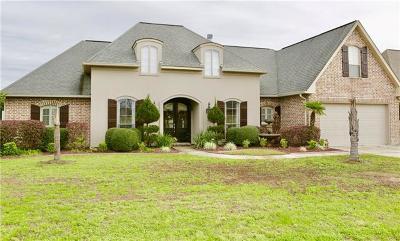 Single Family Home For Sale: 1024 Scarlet Oak Lane