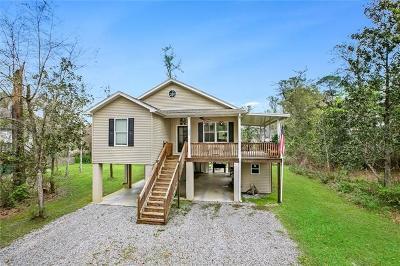 Single Family Home For Sale: 262 Jackson Avenue