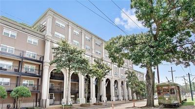 New Orleans Multi Family Home For Sale: 1750 St Charles Avenue #238