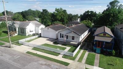 New Orleans Single Family Home For Sale: 2650 Jasmine Street