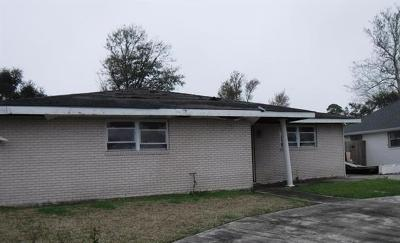 New Orleans Single Family Home For Sale: 4710 Gabriel Drive