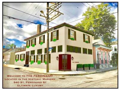 New Orleans Multi Family Home For Sale: 940 St Ferdinand Street #101