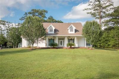 Slidell Single Family Home For Sale: 154 Indian Village Road