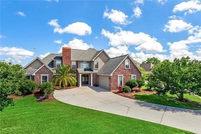 Slidell Single Family Home For Sale: 313 E Augusta Lane