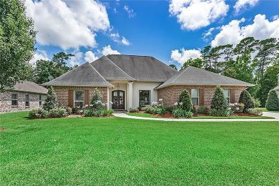 Slidell Single Family Home For Sale: 304 Dockside Drive