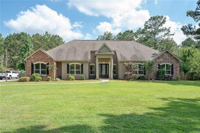Covington Single Family Home For Sale: 267 Kissena Park Court