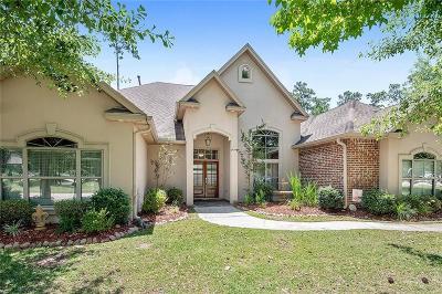 Slidell Single Family Home For Sale: 233 Gum Bayou Lane