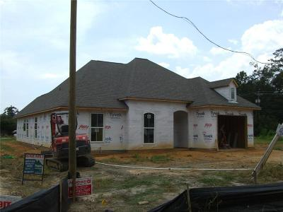 Mandeville Single Family Home For Sale: 2040 Orleans Street