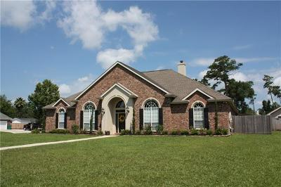 Slidell Single Family Home For Sale: 545 Winbourne Drive