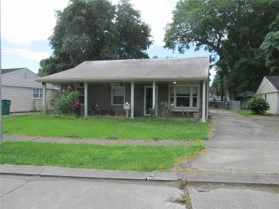 Single Family Home For Sale: 141 Millie Drive