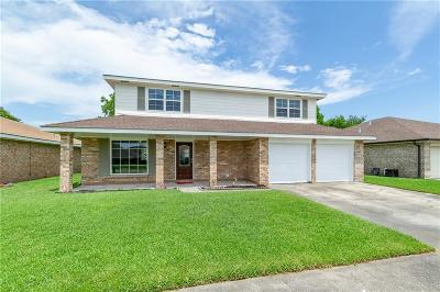 Single Family Home For Sale: 3833 Briant Drive