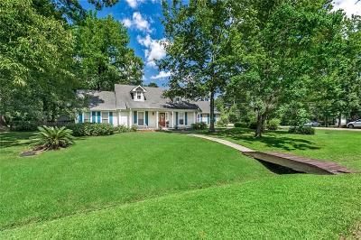 Single Family Home For Sale: 401 Heavens Drive