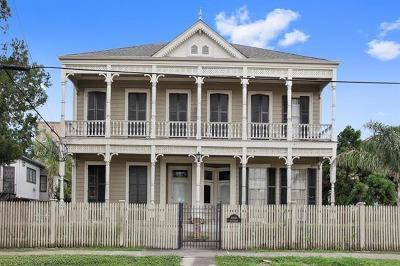 New Orleans Multi Family Home For Sale: 3914 Carondelet Street #B