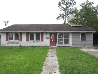 Single Family Home For Sale: 4801 Bright Drive