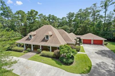 Slidell Single Family Home For Sale: 301 Hawk Drive