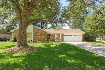 Slidell Single Family Home For Sale: 313 Clover Drive