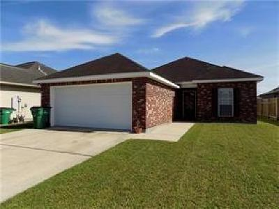Single Family Home For Sale: 2645 Sand Bar Drive