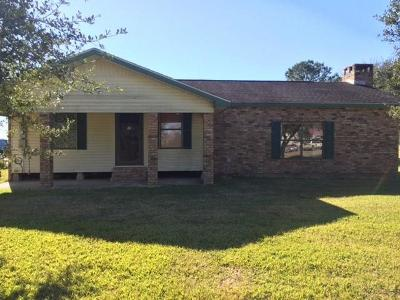 Jeff Davis County Single Family Home For Sale: 18239 Foreman Road