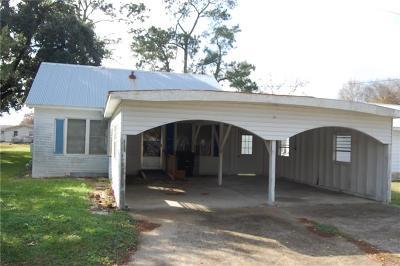 Jeff Davis County Single Family Home For Sale: 311 McClure Street