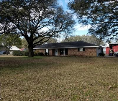 Jeff Davis County Single Family Home For Sale: 8030 Highway 90 Highway