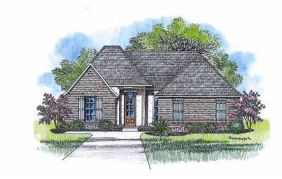 Jeff Davis County Single Family Home For Sale: Tbd Maverick Drive