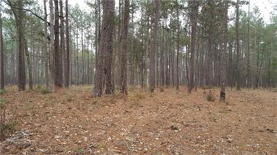Jeff Davis County Residential Lots & Land For Sale: South Lane