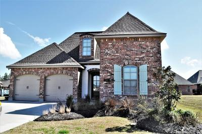 Calcasieu County Single Family Home For Sale: 5807 Fire Willow Lane