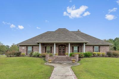 Lake Charles Single Family Home For Sale: 3598 Topsy Road