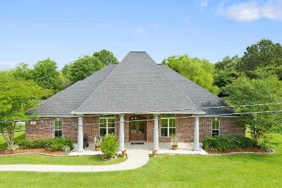 Lake Charles Single Family Home For Sale: 906 E Kade Lane