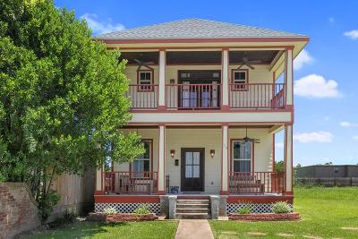 Lake Charles Single Family Home For Sale: 1117 Common Street