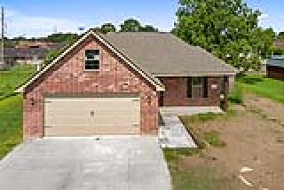Lake Charles Single Family Home For Sale: 3224 General Collins Drive
