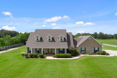 Sulphur Single Family Home For Sale: 3022 Gum Island Road