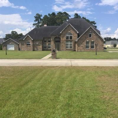 Lake Charles Single Family Home For Sale: 2805 Alice Street