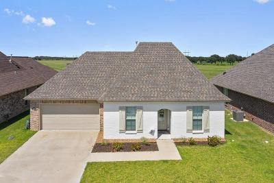 Iowa Single Family Home For Sale: 4962 Chapel Wood Drive