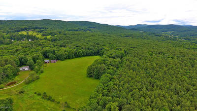 Alford, Becket, Egremont, Great Barrington, Lee, Lenox, Monterey, Mt Washington, New Marlborough, Otis, Sandisfield, Sheffield, South Lee, Stockbridge, Tyringham, West Stockbridge Single Family Home For Sale: 50 Shun Toll Rd