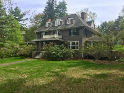 Great Barrington Single Family Home For Sale: 95 Lewis Ave