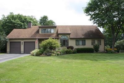 Pittsfield Single Family Home For Sale: 7 Meadow Ridge Dr