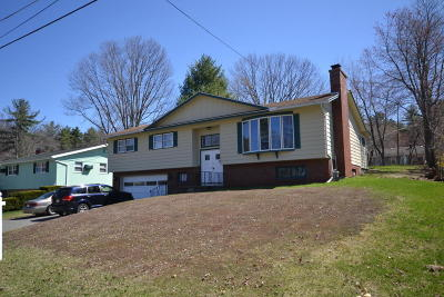 Pittsfield Single Family Home For Sale: 74 Michael Dr