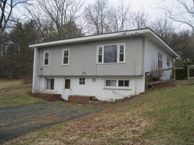 Adams, Clarksburg, Florida, New Ashford, North Adams, Savoy, Williamstown Single Family Home For Sale: 60 Cummings Ave