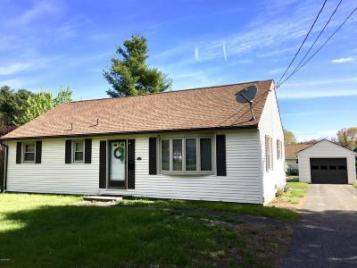 Pittsfield Single Family Home For Sale: 40 Paula Ave