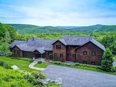 Berkshire County Single Family Home For Sale: 42 East Alford Rd