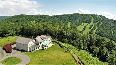 Berkshire County Single Family Home For Sale: 278 North Hillsdale Rd