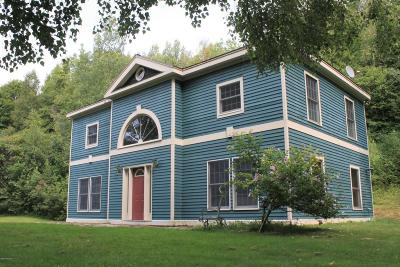 Lanesboro Single Family Home For Sale: 956 North Main St