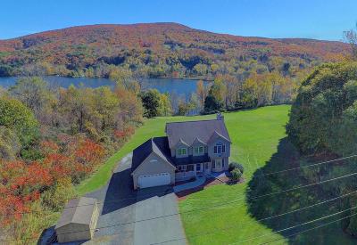 Berkshire County Single Family Home For Sale: 775 Lanesboro Rd